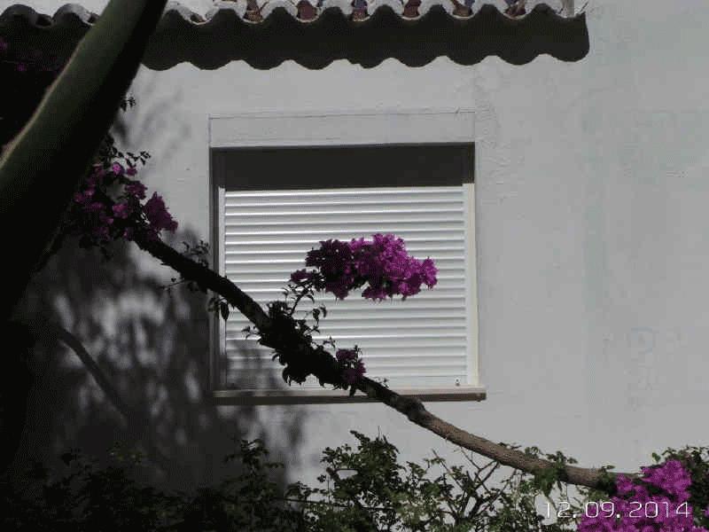 Window Insulation 3